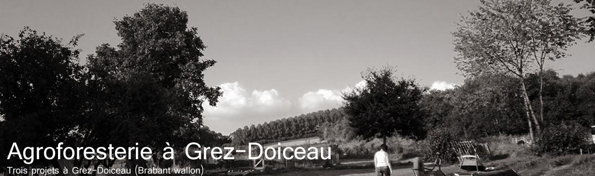 Agroforesterie à Grez-Doiceau
